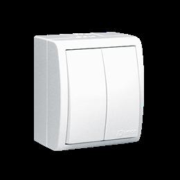 Łącznik schodowy podwójny z podświetleniem bryzgoszczelny biały 10AX-255731