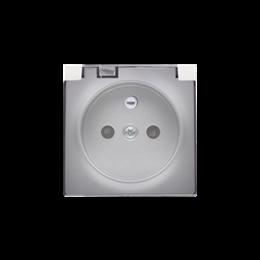 Pokrywa do gniazda wtyczkowego z uziemieniem - do wersji IP44- klapka w kolorze transparentnym srebrny mat, metalizowany-252443