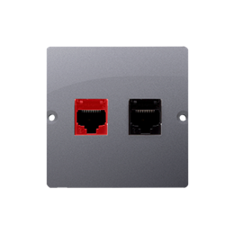 Gniazdo komputerowe RJ45 kategoria 5e + telefoniczne RJ12 (moduł) inox, metalizowany-254164