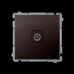 Gniazdo antenowe R-TV końcowe separowane czekoladowy mat, metalizowany-253985