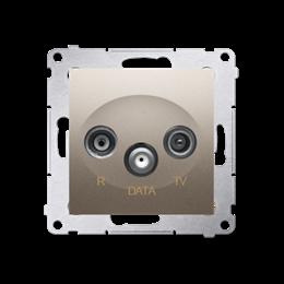 Gniazdo antenowe R-TV-DATA tłum.:10dB złoty mat, metalizowany-252954