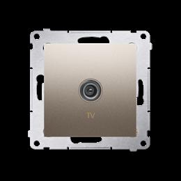 Gniazdo antenowe TV pojedyncze końcowe złoty mat, metalizowany-252966
