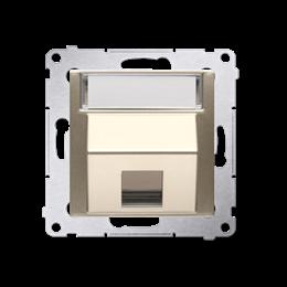 Pokrywa gniazd teleinformatycznych na Keystone skośna pojedyncza z polem opisowym złoty mat, metalizowany-253094