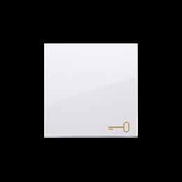 Klawisz pojedynczy z piktogramem klucza do łączników i przycisków biały-253151