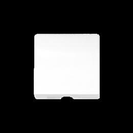 Pokrywa do gniazda głośnikowego / łączników z cięgnem biały-251131