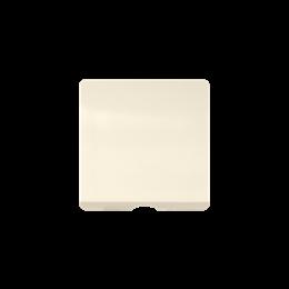 Pokrywa do gniazda głośnikowego / łączników z cięgnem beżowy-251132
