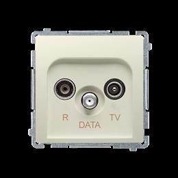 Gniazdo antenowe R-TV-DATA tłum.:10dB beżowy-253970