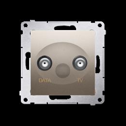 Gniazdo antenowe TV-DATA tłum.:5dB złoty mat, metalizowany-252960