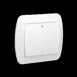 Łącznik dwubiegunowy biały 10AX-255563