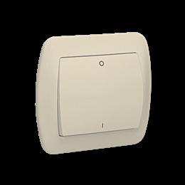 Łącznik dwubiegunowy beżowy 10AX-255564