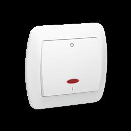 Łącznik dwubiegunowy z podświetleniem biały 10AX-255571