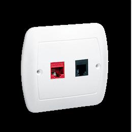 Gniazdo komputerowe RJ45 kategoria 5e + telefoniczne RJ11 biały-255693