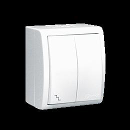Łącznik schodowy podwójny z podświetleniem bryzgoszczelny biały 10AX-255711