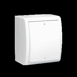 Łącznik dwubiegunowy z podświetleniem bryzgoszczelny biały 10AX-255720